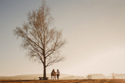 slubna_sesja_z_koniem